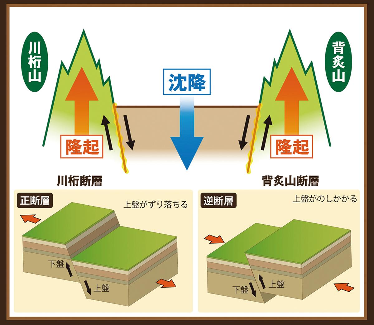 川桁断層と背炙山断層の活動