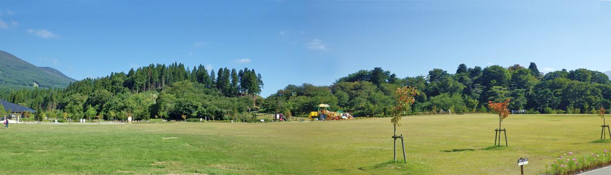 亀ヶ城跡がある丘陵