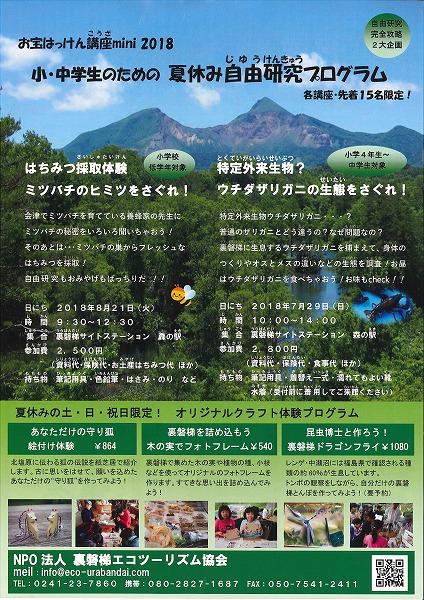 夏休み自由研究プログラム