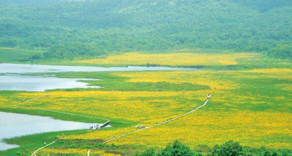 雄国沼全景